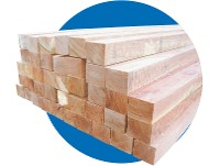 Piques de manga de 1.60mt eucaliptus